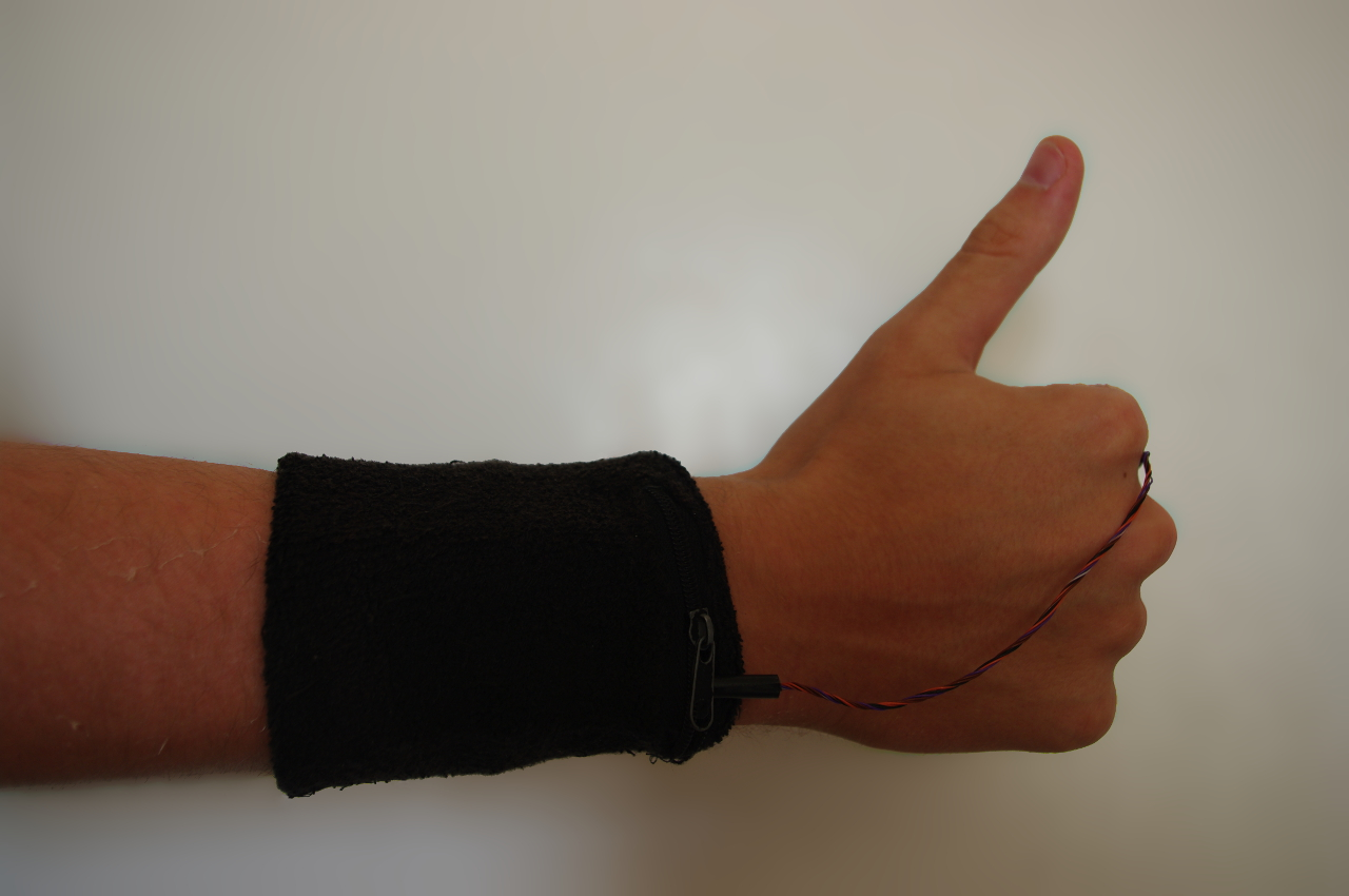 File:ProgArm Arm small.JPG